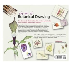 Office - The Art Of Botanical Drawing